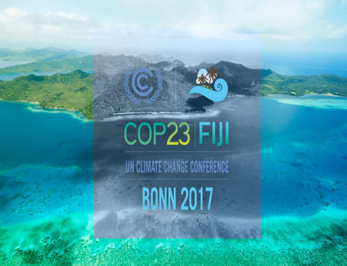 COP 23: small steps towards the Paris Agreement
